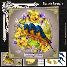 - Three page mini kit includes:- 8 inch square topper and two 3 inch square toppers, insert sheet and decoupage sheet with . Budgies, Pet Birds, Decoupage, Card Making, Happy Birthday, Kit, Peacocks, Card Designs, Tiles