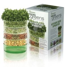 Grow tasty sprouts and baby leaves all year round with the aid of a Johnsons Microgreens Kitchen Seed Sprouter. Growing Microgreens, Growing Sprouts, Growing Vegetables, Freshly Squeezed Orange Juice, Exotic Food, Herbs Indoors, Hydroponics, Hydroponic Growing, Kitchen