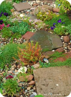Love the flagstones and bricks with sweet little plants in between