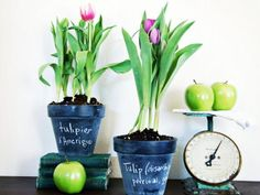 Make Chalkboard Pots for Spring Flowers.Inexpensive terra-cotta pots get a playful makeover with chalkboard paint; fill with her favorite blooming bulbs for a cheery pop of spring color.