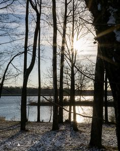Sullivan County Park and Lake in Indiana | Wandering Ways Photography | Amy Feb 2017
