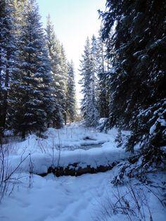 3. Beautiful winter landscape