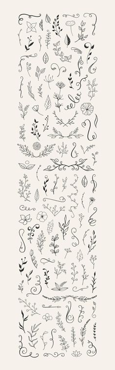 110 Free Hand Drawn Floral Vector Elements