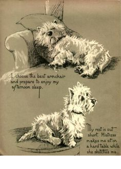 Westie and Scottie Dog Dopey and Gallant Series I by NoCrybabyDoGs, $7.75
