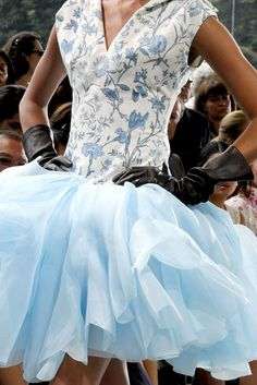 Christian Dior Haute Couture fall 2010