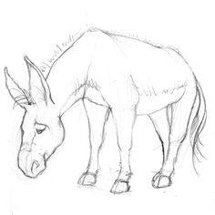 Children's Publishing Blog: Walking In Public Cartoon Art Styles, Cartoon Drawings, Art Drawings, Animal Sketches, Animal Drawings, Donkey Drawing, Drawing S, Rooster Art, Pig Art