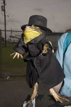 The only place to see live frogs don pigtails and top hats, then eat their scrumptious legs
