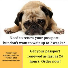 #ICYMI the average wait for a passport renewal right now is 6-7 weeks. #TTOT #Travel http://ht.ly/MH2y303L4HL