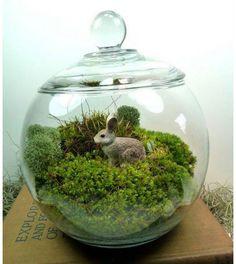 Bunny Rabbit Miniature Garden Moss Terrarium