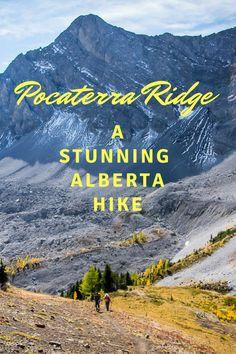 Pocaterra Ridge - one of the best day hikes in Alberta