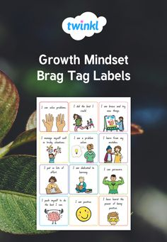 Children will enjoy receiving these lovely brag tags to take home to show that they are showing aspects of a growth mindset. Brag Tags, Growth Mindset, Problem Solving, Effort, Thats Not My, Key, Learning, Unique Key, Studying