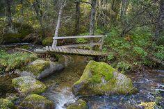 Autumn Bridge by TorfinnJohannessen. @go4fotos