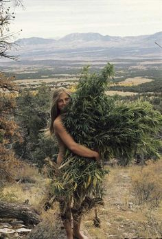 Nice harvest from Huerfano Valley commune in Colorado, 1960s/70s (via http://www.pinterest.com/lvsage1/)