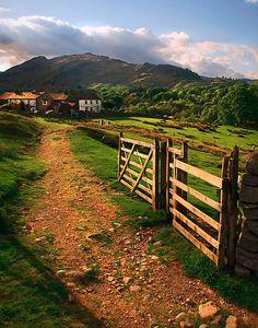 High Park Farm Path, Cumbria by Jason Connolly