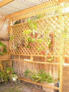 Gardening Design Inspiration, discover this leading pin guide reference 4815441515 for creating your next idea. Build A Greenhouse, Greenhouse Ideas, Bbq Gazebo, Orchid House, Indian Garden, Gazebos, Tropical Garden Design, Shade House, Pinterest Garden