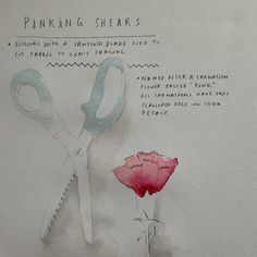 About Pinking Shears #getwise2013