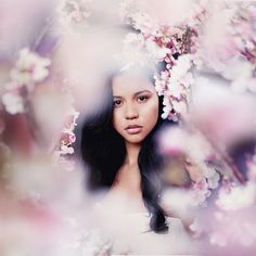 'I thought I saw a girl through the cherry blossoms, it looked like Emily, but I could have just been dreaming…'
