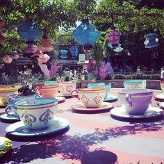Disneyland. Teacups!