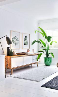Sala de estar   detalhes botânicos - planta + prints de folhas