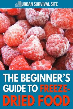 Freeze-drying is a dehydration process that involves freezing the food and then lowering pressure before removing the ice by sublimation. Urban Survival, Survival Food, Emergency Preparedness, Freeze Drying Food, Preserving Food, Shtf, Fruits And Vegetables, Frozen, Ice