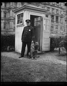 """New White House sentry. ""King Tut,"" President Hoover's big German police dog, now makes the rounds of the police sentry boxes in the White House grounds through the night. He is shown with W.S. Newton of the White House police"""