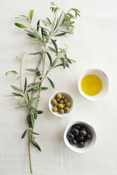 Olive oil, green and black olives in white pots with olive tree. Olives, Essential Oils For Skin, Tree Photography, Olive Tree, Detox Recipes, Fruit Trees, Healthy Fats, Restaurant Bar, Food Styling