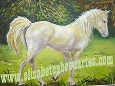 Cavalo : Animal de sorte para 2014 no Feng Shui. Também ativa o setor do Sucesso.
