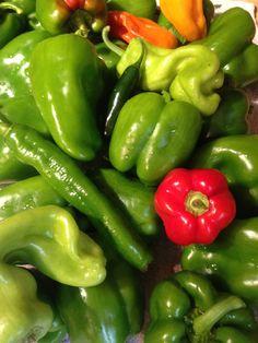 pepperlicious!!!