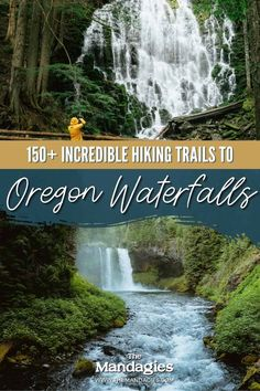 There are so many waterfalls in Oregon to explore, there's one to see no matter where you travel in the state! We're sharing the most famous Oregon waterfalls here, with tips, maps, and downloadable bucket lists to print too! #oregon #PNW #oregonstate #PacificNorthwest #portland #waterfalls Famous Waterfalls, Forest Waterfall, Waterfall Hikes, Oregon Road Trip, Oregon Travel, Ramona Falls, Multnomah Falls, Willamette Valley