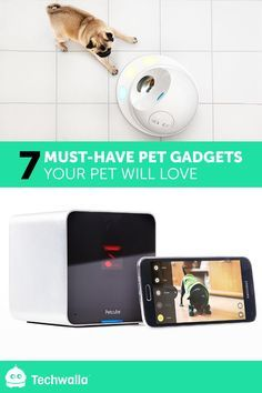 7 Must-have pet gadgets your pet will love  My personal favorites are 1, 2, 4, 5 & 7.