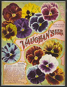 Vaughan's Seed Store 1899 vintage seed packets, vintag seed, vaughan seed, seeds, seed catalogu, garden, seed store, factori outlet, pansi