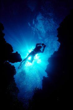 ...go scuba diving
