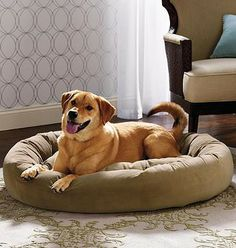 Our Ashton Pet Bed surrounds your dog in dream-inducing comfort.
