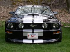 Google Image Result for http://www.allfordmustangs.com/forums/attachments/new-england/27065d1177893603-day-mustangs-unlimited-show-black-stripes.jpg