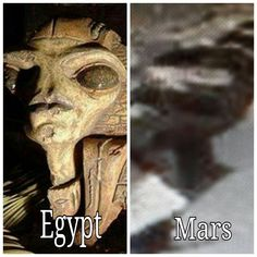 #mars #marsanomalien #alien #artefacts #ancient #ufo #unglaublich #statue #naturalbeauty #astro #art #cool #architecture #hybrid #rock #martians #beauty #forbidden #chic #space #egypt #egyptian #holyday #robots #hybrid #hot