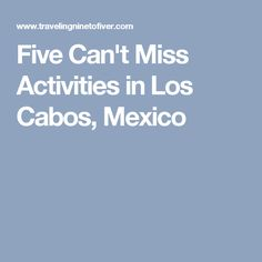 Five Can't Miss Activities in Los Cabos, Mexico