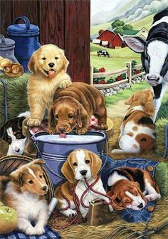 Puppies puppies and more pups images cute animals Cute Puppies, Cute Dogs, Dogs And Puppies, Animal Pictures, Cute Pictures, Animals And Pets, Cute Animals, Illustration Art, Illustrations