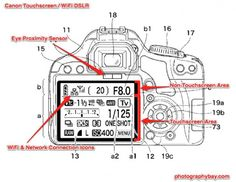 Nikon and Canon Forge Ahead with More Patents