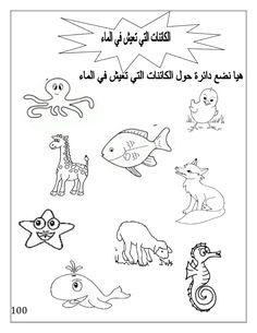 بوكلت اللغة العربية بالتدريبات لثانية حضانة Arabic booklet kg2 first … Arabic Alphabet Letters, Arabic Alphabet For Kids, Alphabet Letter Crafts, Alphabet Book, Alphabet Tracing Worksheets, Alphabet Coloring Pages, Preschool Worksheets, Preschool Crafts, Arabic Handwriting