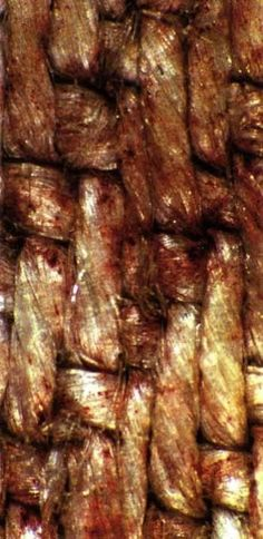 A close up of the blood on The Shroud of Turin.