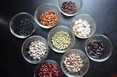 How To Save Seeds From Your Garden