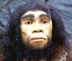 homo_heidelbergensis illustratie.jpg