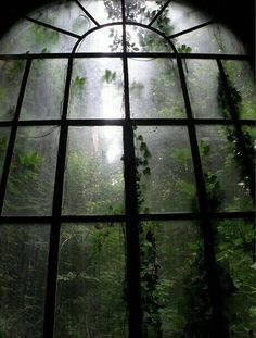 I am resting in a abandoned mansion. I see the moonlit mist in the forest. I hear the sound of wolves howling. I fall asleep watching the misty forest through a large window. Dark Green Aesthetic, Nature Aesthetic, Green Aesthetic Tumblr, Aesthetic Pastel, Bohemian House, Dark Bohemian, Slytherin Aesthetic, Home Photo, Abandoned Places