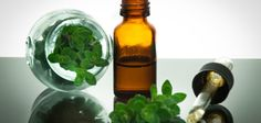 Oregano is often used in the food as spice. Oregano oil on the other hand is amazingly healthy as well. The active component in oregano that is responsible for its health benefits is called carvacr… Asthma Remedies, Herbal Remedies, Home Remedies, Natural Remedies, Rosacea Remedies, Natural Treatments, Candida Albicans, Candida Overgrowth, Oregano Essential Oil