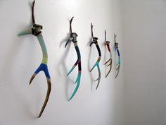 horns.