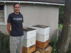 Bees find a home in Saskatoon backyard | News Talk 650 CKOM
