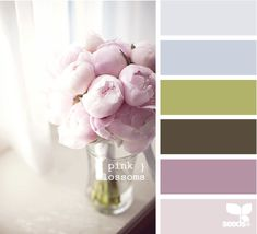 Great Neutral Colors for Home- My House Colors