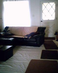 living room 2012
