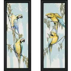 Trinidad Blue and Yellow Macaws Framed Art, set of 2. We love these pieces!  Adding blue this way to a grey and yellow room or black and white room creates another layer of harmony.