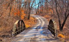 Country road (Andrew County, Missouri) by Lisa Donahoo